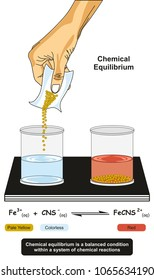 Chemical Equilibrium infographic diagram showing a lab experiment showing reactions of iron ions with thiocyanate ions and reverse reactions proceed at the same rate for chemistry and physics science