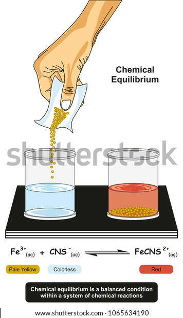 Chemical Equilibrium Infographic Diagram Showing Lab Stock