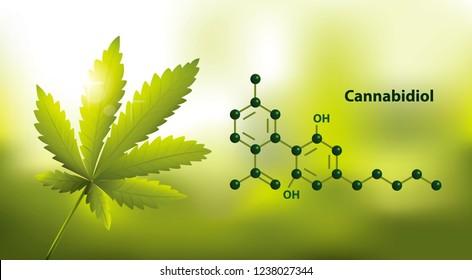 chemical formula of Marijuana CBD brain function