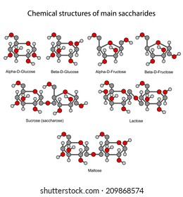 Chemical formulas of main sugars: mono- and disaccharides, 2d illustration, isolated on white background, circles & sticks style, vector, eps8