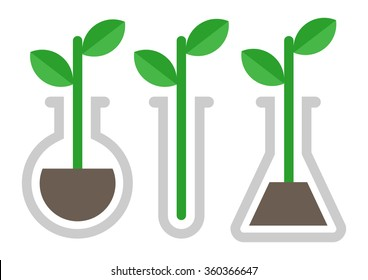 Chemistry icon. Plant in vitro