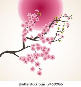 фотообои Cherry Blossom