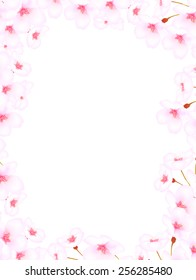 Cherry blossom background