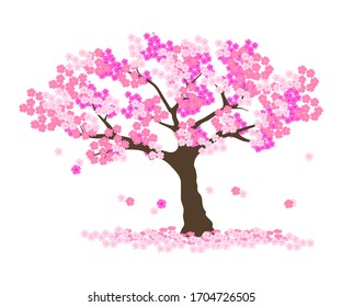 Cherry blossom background  vector ep10.