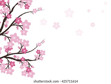 фотообои Cherry blossom flowers background. Sakura pink flowers background.