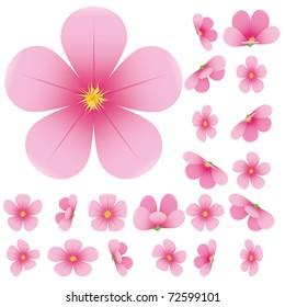 Cherry blossom, flowers of sakura, set, pink, flowers collection,vector illustration