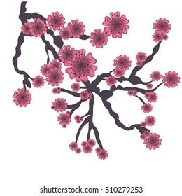 cherry blossom icon iimage