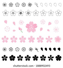 Cherry blossom icon. Vector illustration set