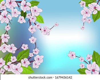 Cherry blossom pattern. Modern abstract pink sakura design template on blue backdrop. Vintage japanese vector template with pink the sakura flowers on blue background for celebration design