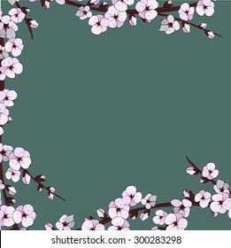 Cherry blossom. Sakura flowers.  Branch with pink flowers.
