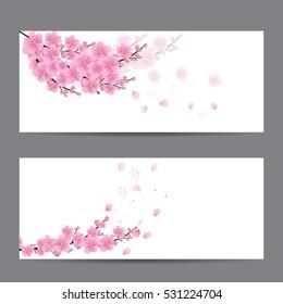 cherry blossom Sakura flowers; invitation cards vector illustration