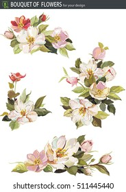 Cherry blossom or sakura japan flower over white background