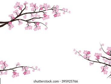 фотообои Cherry blossom, Sakura pink flowers background.