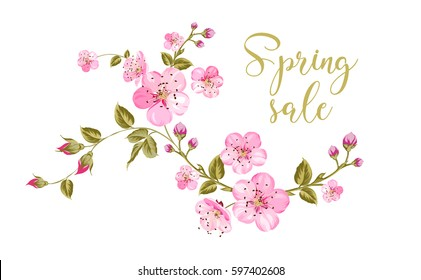 Cherry blossom sale card. Spring sale and botanical garden text over white background with sakura flower frame. Vector illustration.