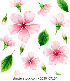 Cherry blossom. Seamless pattern of pink flowers and green leaves on white background. Spring watercolor. Vector illustration