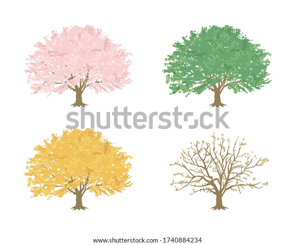 桜の木(季節の画像)