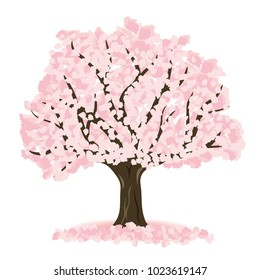 Cherry blossom vector illustration.