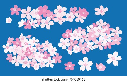 Cherry blossom vector illustrations - Sakura