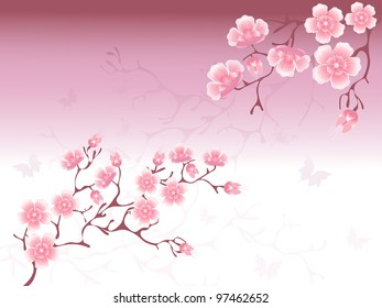 фотообои Cherry Blossoms Background