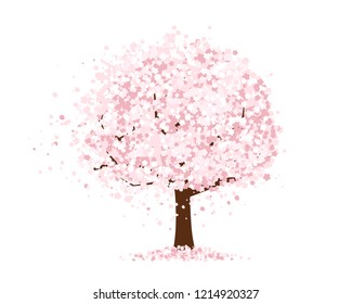 Cherry Blossoms illustration.