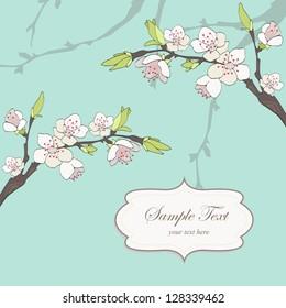 Cherry branch in blossom. Seasonal background.