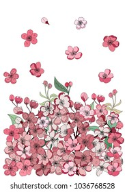 Cherry flower spring season vector illustration background.Poster design Sakura flower for printing on paper.Beautiful line art Peach blossom isolate background.