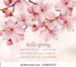 Cherry flowers branch spring card background Vector