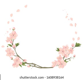 Cherry flowers- frame. Vector illustration, set of blooming sakura twigs
