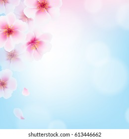 Cherry Flowers With Gradient Mesh, Vector Illustration