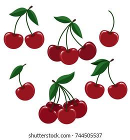 Cherry illustration. Vector cherries or fresh cherise berry set for logo isolated on white background