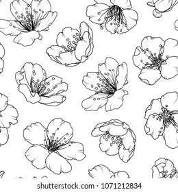 Cherry sakura tree flowers bloom blossom. Floral seamless pattern texture. Black and white detailed line design drawing outline sketch tattoo style. Vector design illustration.