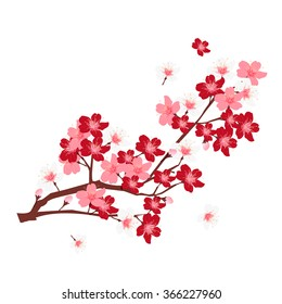 фотообои Cherry spring flower background