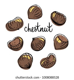 Chestnut/ Set of isolated sketchy style fruits/ Doodle pencil drawn fruits in color/ Hand drawn vector illustration