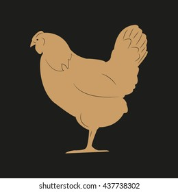 chicken bird, vector illustration