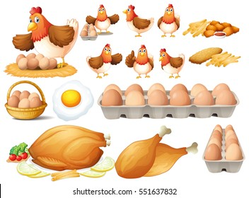 Chicken and different types of chicken products illustration