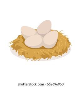 Chicken eggs in the nest, poultry breeding vector Illustration