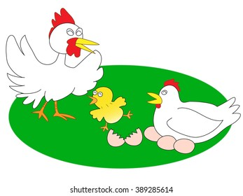 The chicken family who is pleased with the birth of the young bird