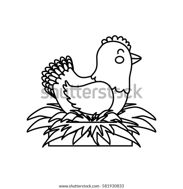 chicken farm animal icon vector illustration graphic design