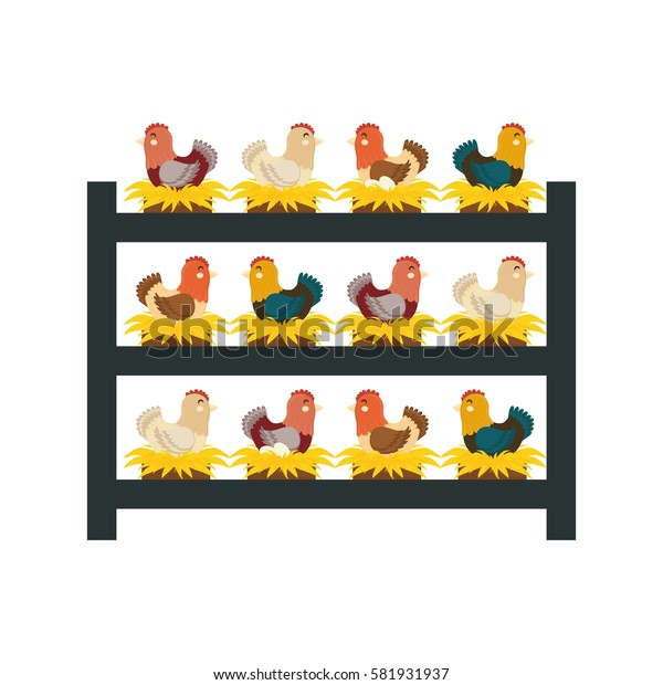 chicken farm animal icon vector illustration graphic design