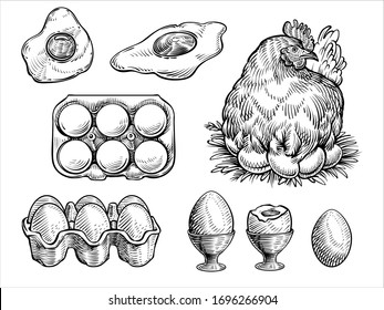 Chicken fresh eggs, vector illustration. Farm sketch set with the hen on a nest, egg box, fried and boiled eggs.  Vintage engraving style.
