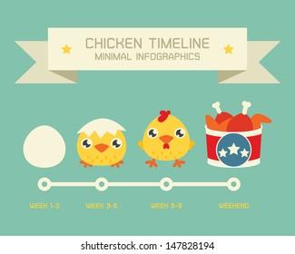 Chicken life circle, vector