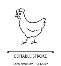 Chicken linear icon. Poultry farm. Thin line illustration. Hen. Contour symbol. Vector isolated outline drawing. Editable stroke