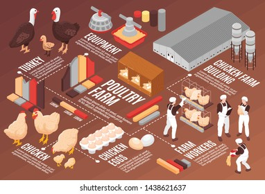 Chicken poultry farm isometric flowchart poster with meat eggs production equipment farm workers buildings birds vector illustration