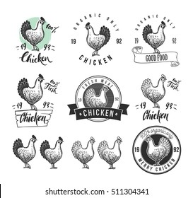 Chicken product logotypes set. Hen meat and eggs vintage produce elements. Badges and design elements for the chicken manufacturing. Vector illustration