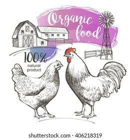 Chicken, rooster and farm. Vector illustration in vintage style.