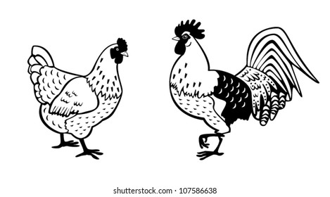 chicken,black and white vector picture,standing rooster and hen isolated on white background,side view