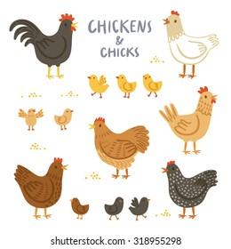 Chickens and chicks illustration set