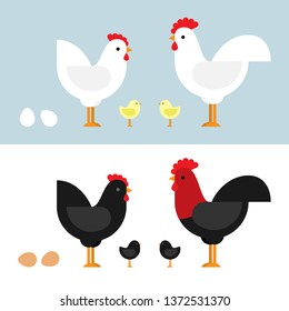 Chickens set vector illustration in color. Black and white Hen and Rooster. Character design in flat.