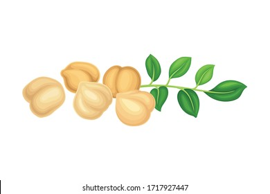 Chickpea Beige Pile with Green Branch as Annual Legume Plant Vector Illustration
