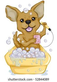 Chihuahua Bathing - Vector